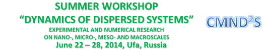 Dynamics of Dispersed Systems: Experimental and Numerical Research on nano-, micro-, meso- and macroscale